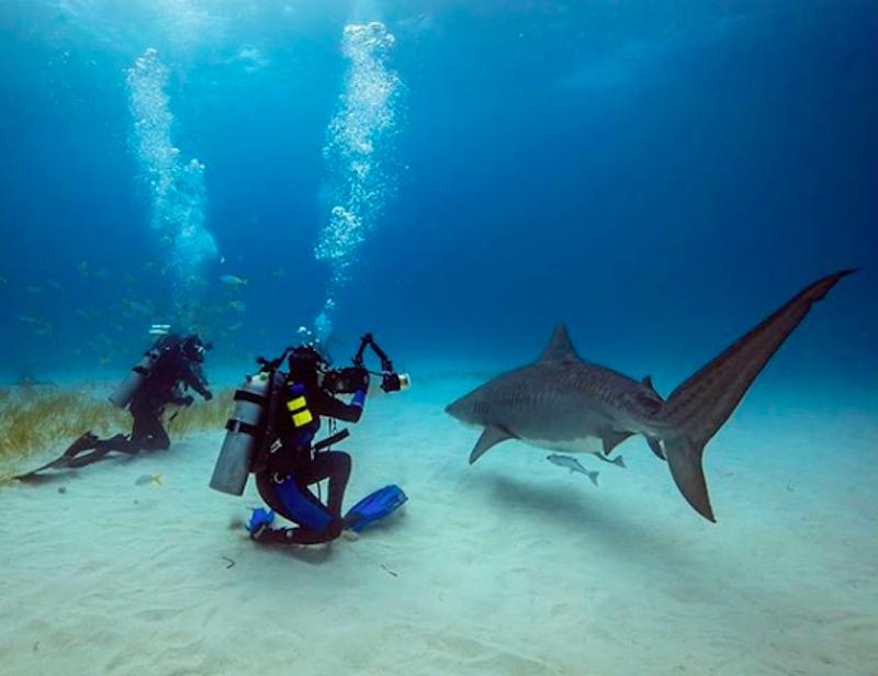 Foto subaquatica noronha
