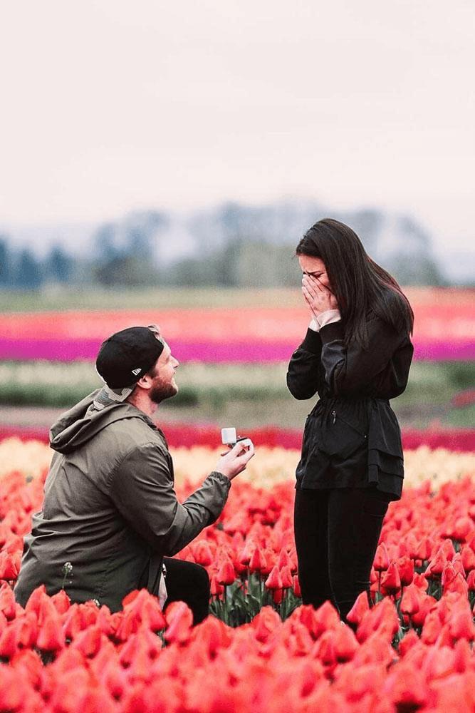 pedido em campo de tulipas