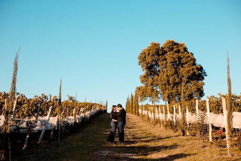 pedido de casamento em vinícola em minas gerais