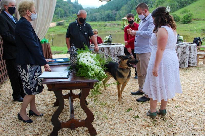 celebração de casamento e coronavirus