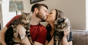 casais apaixonados por gatos